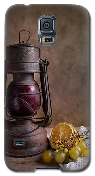 Lamp And Fruits Galaxy S5 Case by Nailia Schwarz