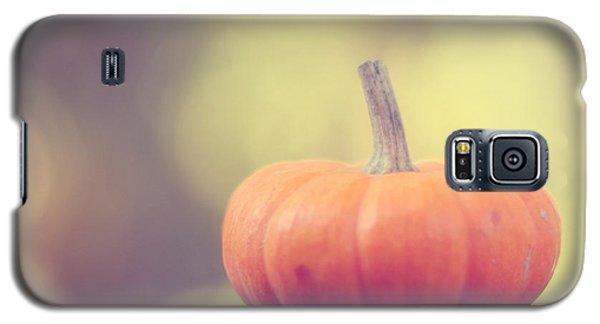 Little Pumpkin Galaxy S5 Case by Amy Tyler