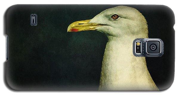Animals Galaxy S5 Cases - Naujaq Galaxy S5 Case by Priska Wettstein