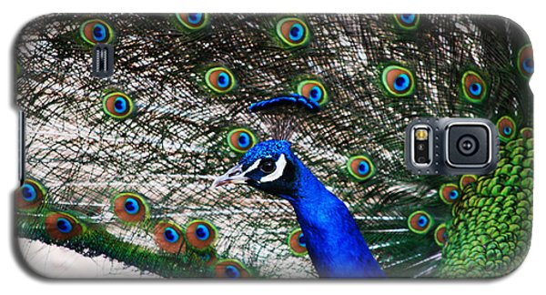 Proud Peacock Galaxy S5 Case by Sheryl Cox
