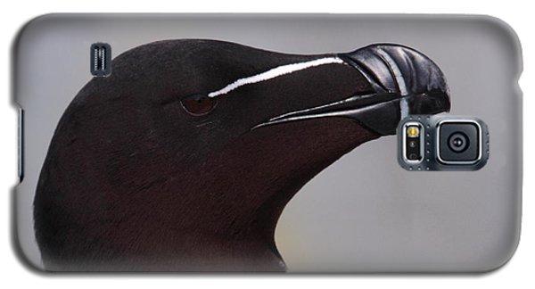 Razorbill Portrait Galaxy S5 Case by Bruce J Robinson