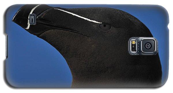Razorbill Portrait Galaxy S5 Case by Tony Beck