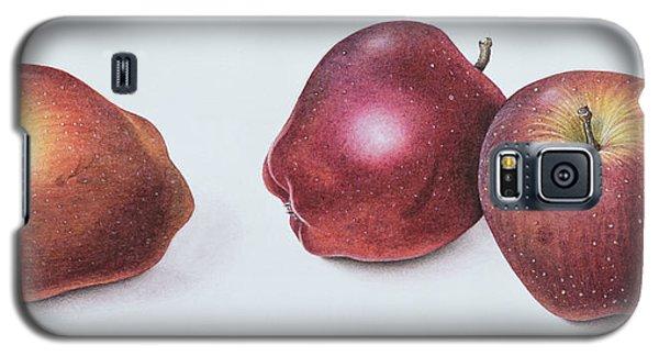 Red Apples Galaxy S5 Case by Margaret Ann Eden
