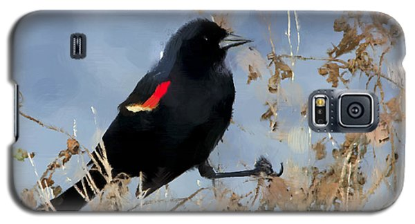 Redwing Blackbird Galaxy S5 Case by Betty LaRue