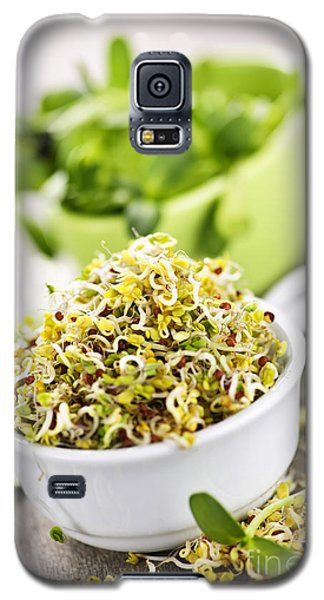 Sprouts In Cups Galaxy S5 Case by Elena Elisseeva