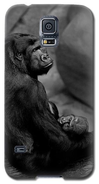 Tender Moment Galaxy S5 Case by Sebastian Musial