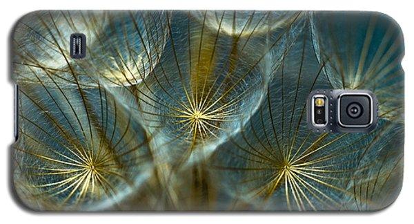 Galaxy S5 Cases - Translucid Dandelions Galaxy S5 Case by Iris Greenwell