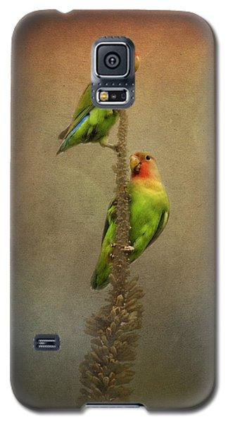 Up And Away We Go Galaxy S5 Case by Saija  Lehtonen