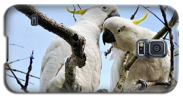 White Cockatoos Galaxy S5 Case by Kaye Menner