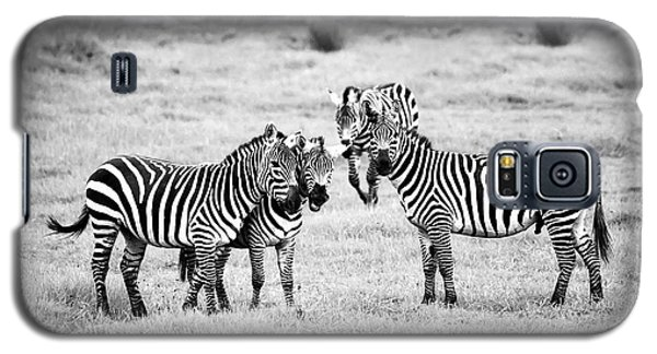 Zebras In Black And White Galaxy S5 Case by Sebastian Musial