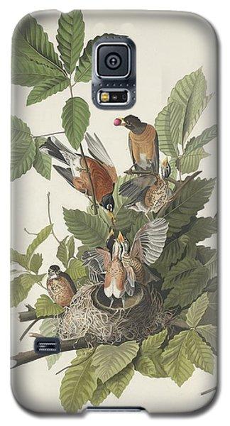 American Robin Galaxy S5 Case by John James Audubon