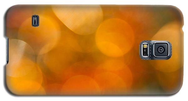 Galaxy S5 Cases - August Heat Galaxy S5 Case by Jan Bickerton