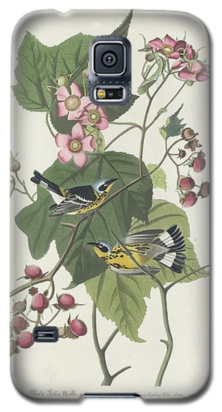 Black And Yellow Warbler Galaxy S5 Case by John James Audubon