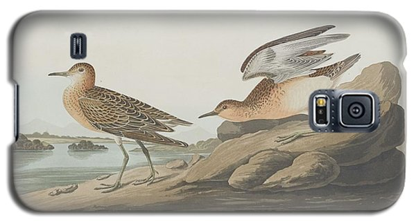 Buff-breasted Sandpiper Galaxy S5 Case by John James Audubon