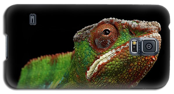 Closeup Head Of Panther Chameleon, Reptile In Profile View Isolated On Black Background Galaxy S5 Case by Sergey Taran