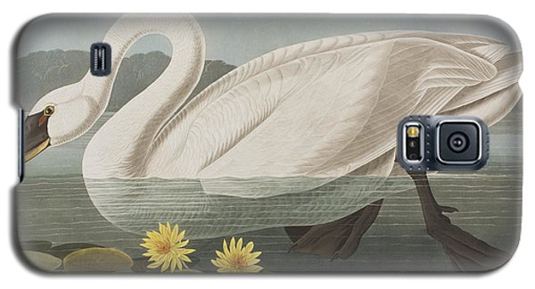 Common American Swan Galaxy S5 Case by John James Audubon