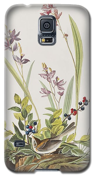 Field Sparrow Galaxy S5 Case by John James Audubon