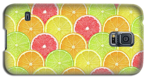 Fresh Fruit  Galaxy S5 Case by Mark Ashkenazi