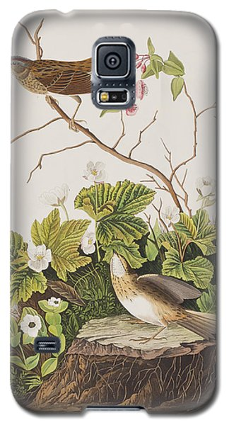 Lincoln Finch Galaxy S5 Case by John James Audubon