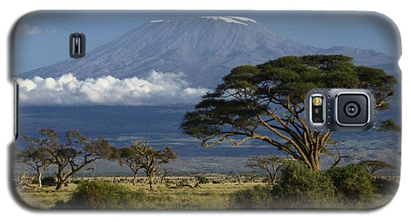 Mount Kilimanjaro Galaxy S5 Case by Michele Burgess
