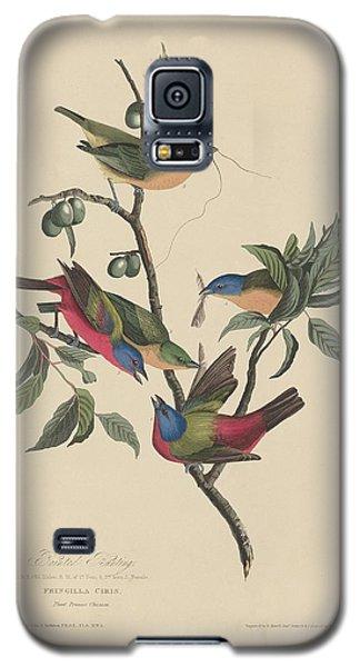 Painted Bunting Galaxy S5 Case by John James Audubon