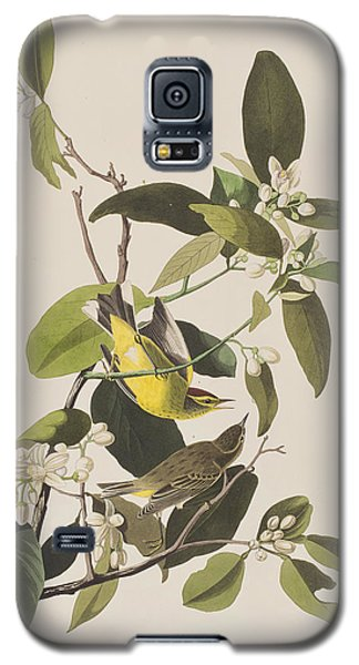 Palm Warbler Galaxy S5 Case by John James Audubon