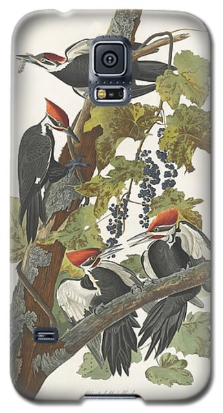 Pileated Woodpecker Galaxy S5 Case by John James Audubon