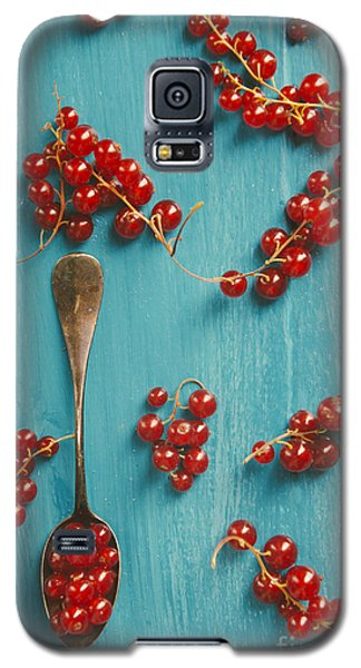Pyrography Galaxy S5 Cases - Red Currant Galaxy S5 Case by Jelena Jovanovic