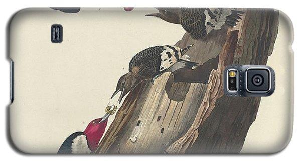 Red-headed Woodpecker Galaxy S5 Case by John James Audubon