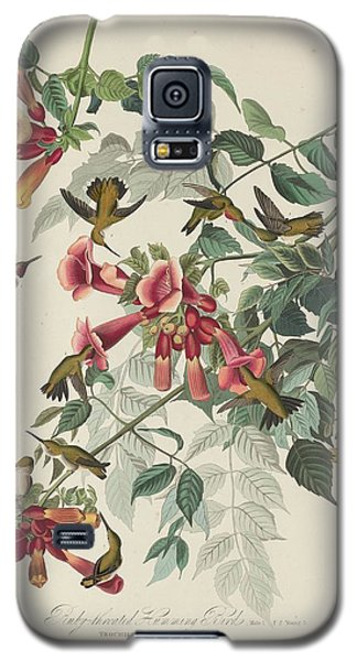 Ruby-throated Hummingbird Galaxy S5 Case by John James Audubon