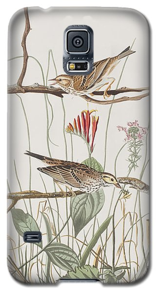 Savannah Finch Galaxy S5 Case by John James Audubon