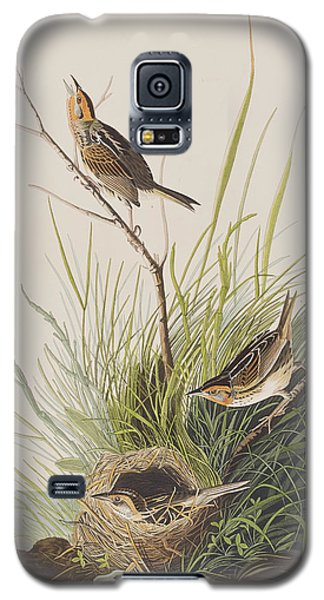 Sharp Tailed Finch Galaxy S5 Case by John James Audubon