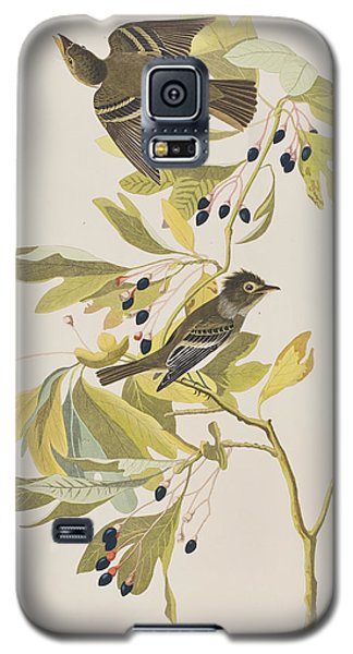 Small Green Crested Flycatcher Galaxy S5 Case by John James Audubon