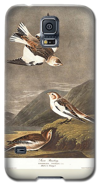 Snow Bunting Galaxy S5 Case by John James Audubon