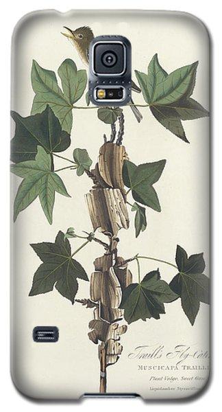 Traill's Flycatcher Galaxy S5 Case by John James Audubon