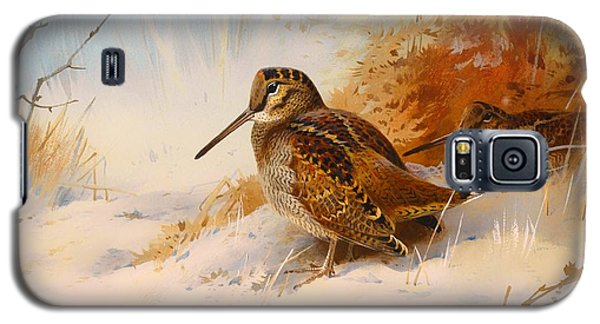 Winter Woodcock Galaxy S5 Case by Mountain Dreams