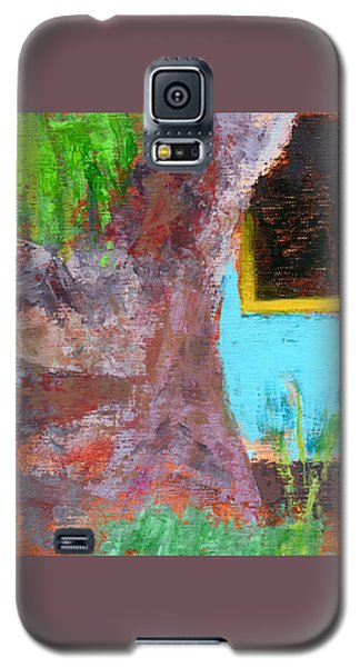Rcnpaintings.com Galaxy S5 Case by Chris N Rohrbach