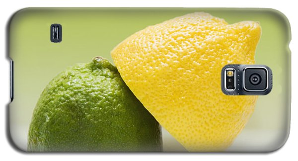 12 Organic Lemon And 12 Lime Galaxy S5 Case by Marlene Ford