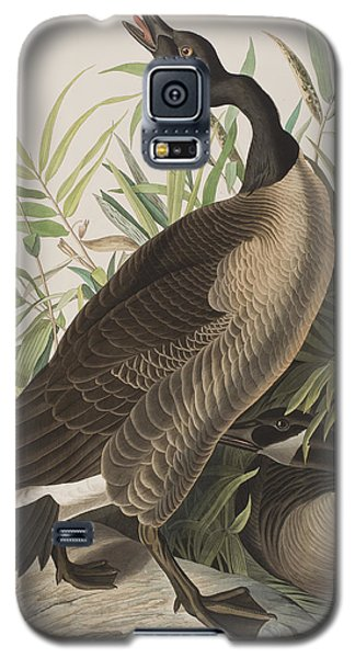Canada Goose Galaxy S5 Case by John James Audubon