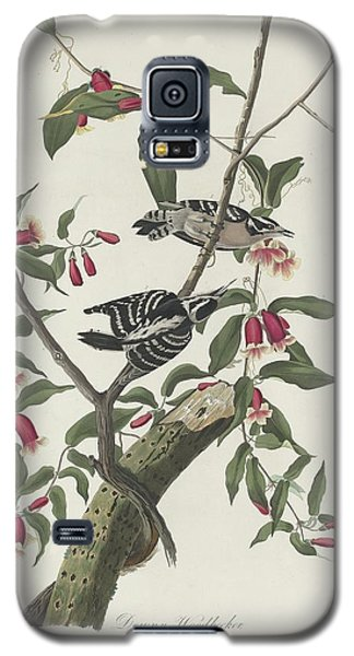Downy Woodpecker Galaxy S5 Case by John James Audubon