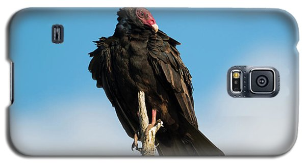 Looking For A Meal Galaxy S5 Case by Mike Dawson
