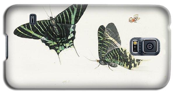 Studies Of Two Butterflies Galaxy S5 Case by Anton Henstenburgh