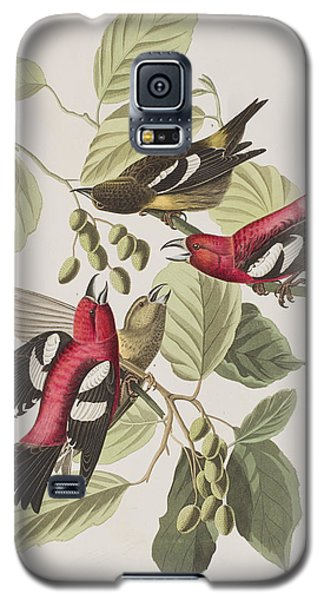 White-winged Crossbill Galaxy S5 Case by John James Audubon