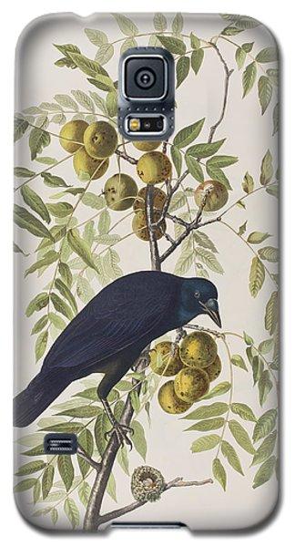 American Crow Galaxy S5 Case by John James Audubon