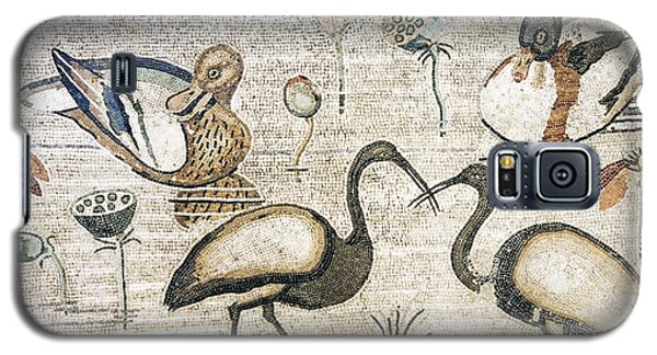 Nile Flora And Fauna, Roman Mosaic Galaxy S5 Case by Sheila Terry