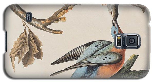 Passenger Pigeon Galaxy S5 Case by John James Audubon