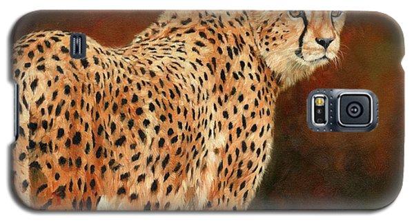Cheetah Galaxy S5 Case by David Stribbling