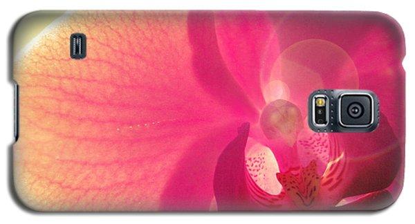 Amoroso Galaxy S5 Case by Amy Tyler