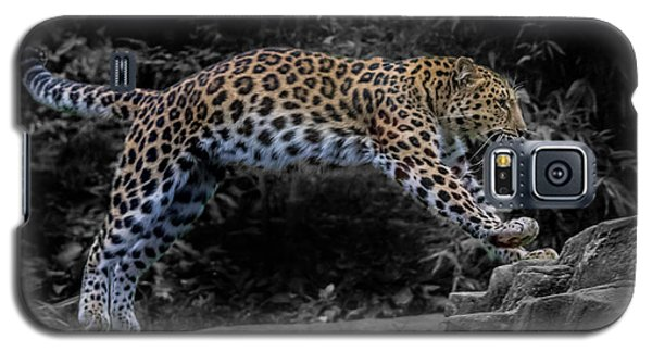 Amur Leopard On The Hunt Galaxy S5 Case by Martin Newman