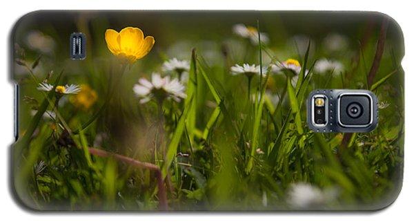 Galaxy S5 Cases - An inner light Galaxy S5 Case by Chris Fletcher